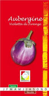 Auberginen-Samen Violetta di Firenze