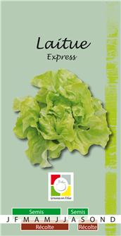 Salatsamen Express
