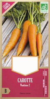 Graines de carotte Nantaise